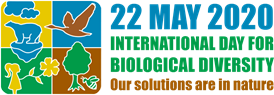 World celebrates nature as a source of solutions to global challenges